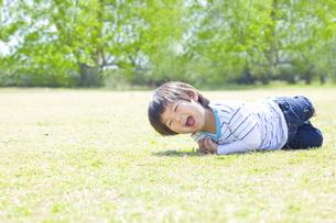 楽しそうに芝生で遊ぶ子供の写真素材 [FYI00264331]