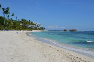 カリブ海ビーチの素材 [FYI00265232]