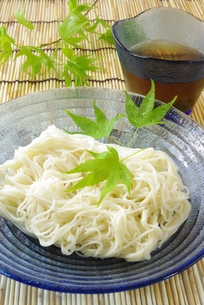冷し素麺の写真素材 [FYI00265284]