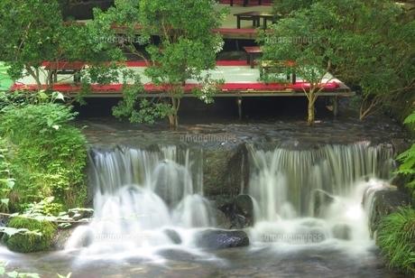 夏の貴船川の素材 [FYI00265303]