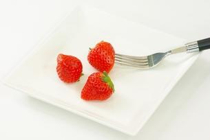 イチゴを食すの写真素材 [FYI00265357]