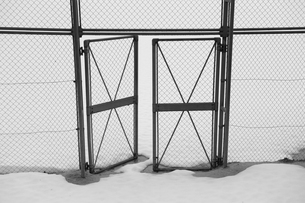 金網フェンスの扉の写真素材 [FYI00265529]