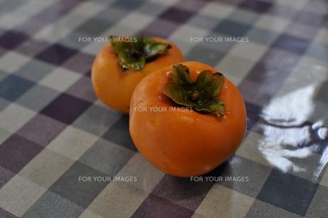 柿の写真素材 [FYI00266122]