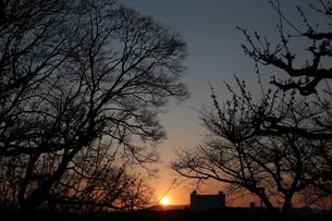 The morning light 朝日の写真素材 [FYI00266132]