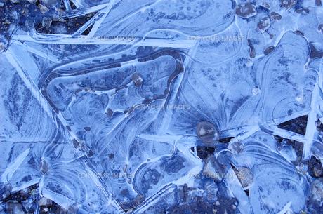 氷の模様の写真素材 [FYI00266530]
