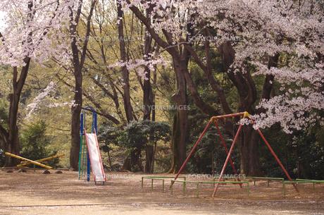 春の公園の写真素材 [FYI00266599]