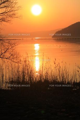 夕日の写真素材 [FYI00266699]
