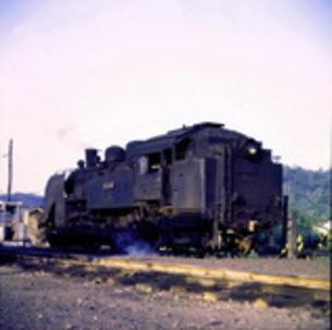 現役蒸気機関車C11の素材 [FYI00266726]