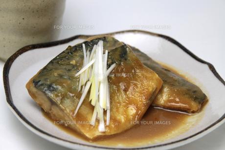 煮魚 さば味噌煮の写真素材 [FYI00267569]