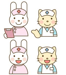 動物の看護婦の素材 [FYI00267624]