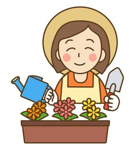 園芸の写真素材 [FYI00267626]