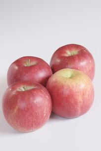 リンゴ (ふじ)の写真素材 [FYI00268216]
