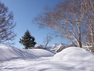 雪山の朝の写真素材 [FYI00268256]