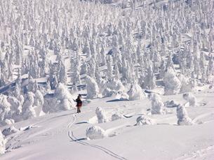 樹氷の写真素材 [FYI00268268]
