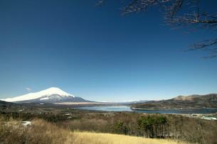 富士山の写真素材 [FYI00268284]