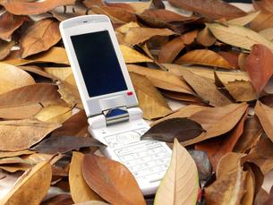 枯葉の中の携帯電話の写真素材 [FYI00268925]