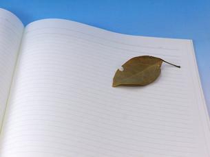 落ち葉ののったノートの写真素材 [FYI00268930]