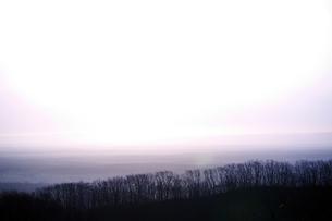 朝靄の釧路湿原の写真素材 [FYI00268932]