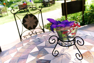 テーブル上のクレマチスの生花の写真素材 [FYI00268944]