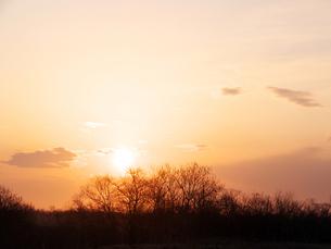 釧路湿原の朝日の写真素材 [FYI00268946]