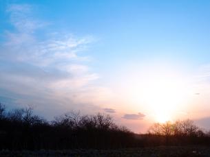 朝の釧路湿原の写真素材 [FYI00268947]