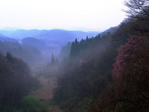 朝霧の渓谷の写真素材 [FYI00268957]