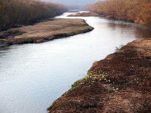 雪裡川の写真素材 [FYI00268961]