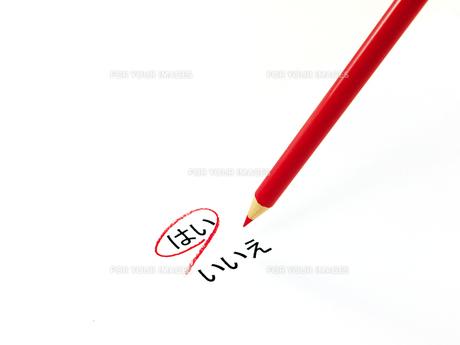 はいに丸印をつけた色鉛筆の素材 [FYI00269026]