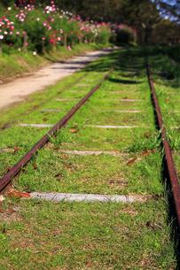 使用していない線路の写真素材 [FYI00269137]