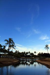 アラモアナビーチパークの池の素材 [FYI00269206]