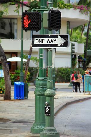 ホノルルの歩行者用信号機と一歩通行の道路標識の写真素材 [FYI00269214]