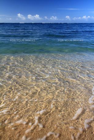 透明で青い海の波打ち際.の素材 [FYI00269218]