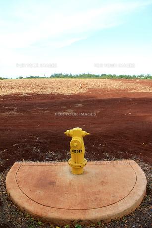 荒野の消火栓の写真素材 [FYI00269248]