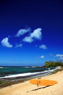レスキューボードの置かれた海岸の写真素材 [FYI00269264]
