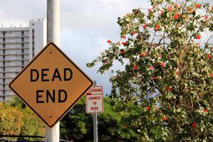 行き止まりの標識の写真素材 [FYI00269316]