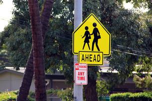 横断歩道の標識の写真素材 [FYI00269322]