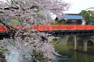 飛騨高山の中橋の写真素材 [FYI00269465]