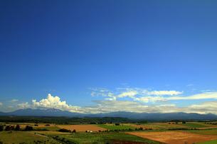 千代田の丘から見た大雪山連邦と田園風景の写真素材 [FYI00269575]