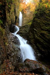 竜化の滝の写真素材 [FYI00269696]
