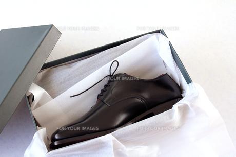 紳士靴の写真素材 [FYI00269712]