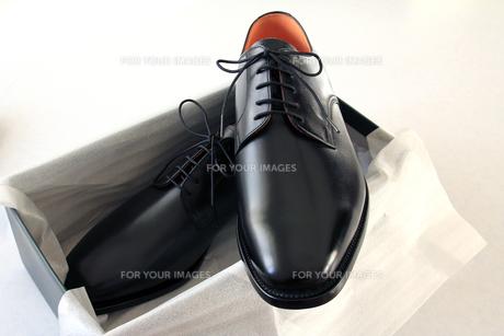 紳士靴の写真素材 [FYI00269716]