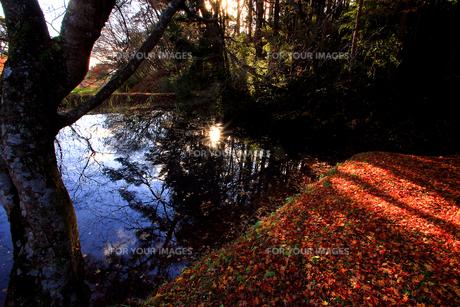 松島四大観扇谷の池の写真素材 [FYI00269729]