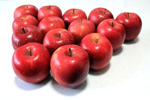 りんごの写真素材 [FYI00269741]