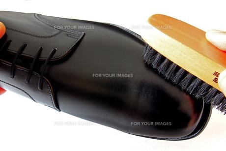 靴磨きの写真素材 [FYI00269752]