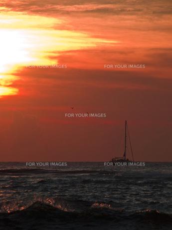 沖縄の夕日の写真素材 [FYI00269754]