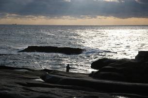 岸壁と釣り人の写真素材 [FYI00269791]