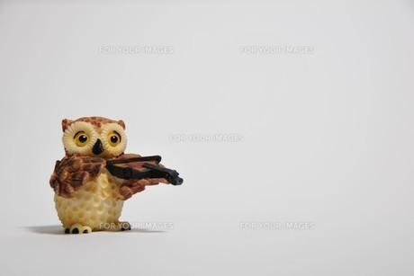 フクロウの置物の写真素材 [FYI00269983]