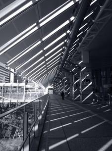 オフィス街の自由通路の写真素材 [FYI00270030]