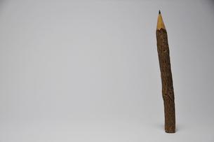 木のエンピツの写真素材 [FYI00270036]