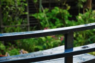 雨のガーデンベンチの写真素材 [FYI00270110]